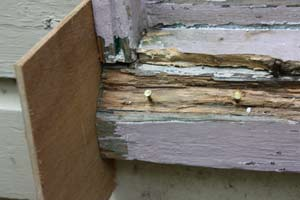 using plywood to build a form around a rotted wood windowsill