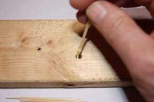 plugging a hole in wood